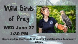 Wild Birds of Prey @ Lomira Quad/Graphics Community Library | Milwaukee | Wisconsin | United States